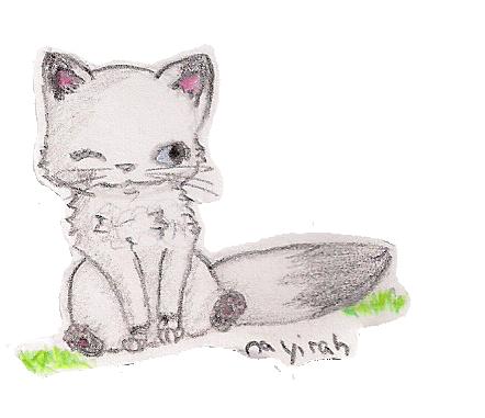 Sai, the little kitten. by Nayirah