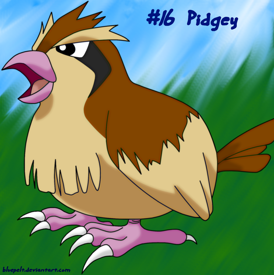 Pidgey By Bluepelt On Deviantart