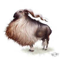 Le goat by Sirenophilia