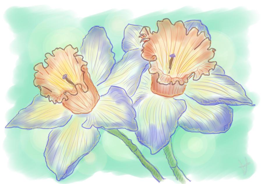 Narcissus by signore-illusionista