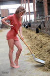 Anna the farmer's wife 17