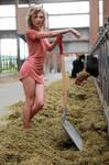 Anna the farmer's wife 19