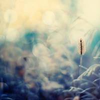 I am so alone. by magnesina