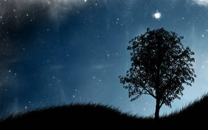 Night by MGawronski