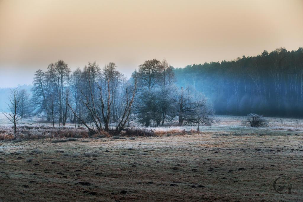 Colors of the morning by MGawronski