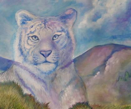 Tiger Detail 1