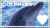 STAMP: I love dophins by christophernicol