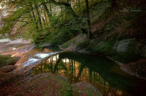 Autumnal stream (IV). by Phototubby