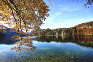 Autumnal reflection. by Phototubby