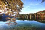 Autumnal reflection.