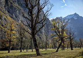 Karwendel autumn. by Phototubby