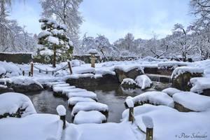 From last winter (II). by Phototubby