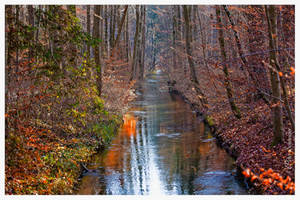 Fall stream. by Phototubby