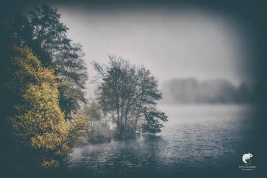 Late autumn walk.