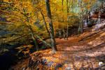 Autumnal walk (III).