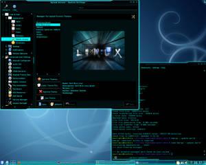 Gentoo Screenie 100525