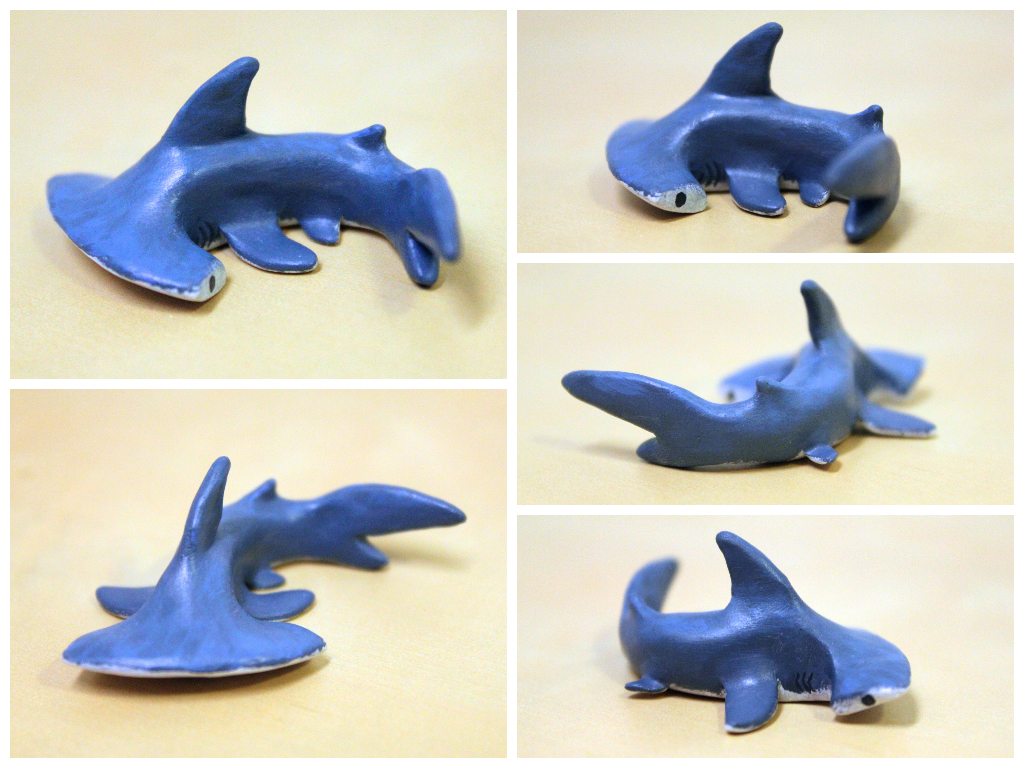Miniature Hammerhead Shark by lonelysouthpaw