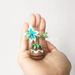 Silent Princess Flower