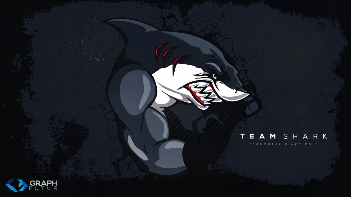 Wallpaper - TeamShark by GraphFutur
