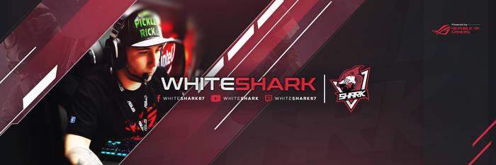Banner Twitter VNEW (whiteshark)
