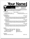 Resume Layout 4