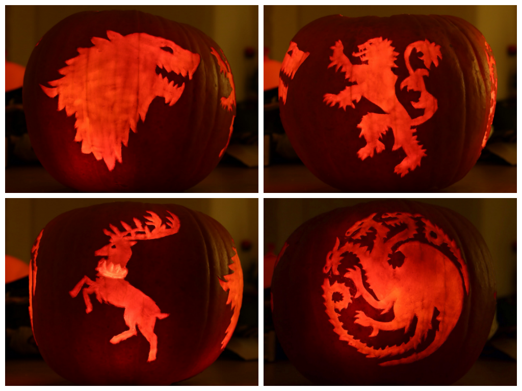 Winter is coming game of thrones houses pumpkin by