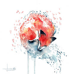 rest - fox