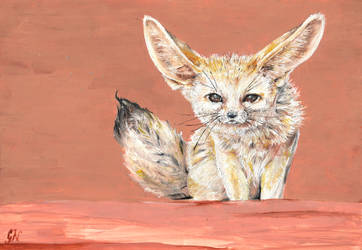 Fennec Fox by chinchillacosmica