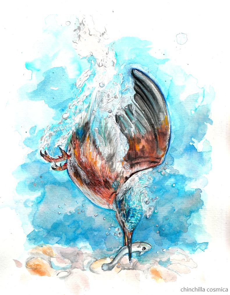 Martin pescador by chinchillacosmica