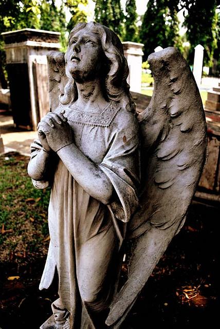 Frozen Angel by bakulrujak