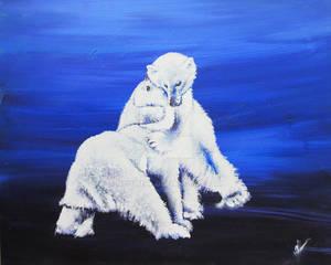 Home - polar bears