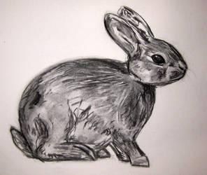 Rabbit by MishamigosArt