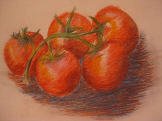 Coloured Pencils -  Tomatoes by MishamigosArt