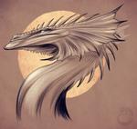 Sea Dragon Sketch
