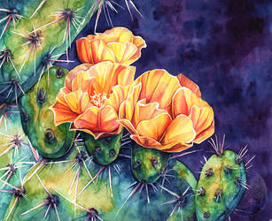 Cactus Flower Watercolour by Simkaye
