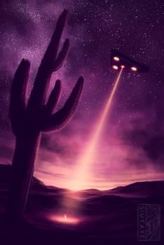 DAY 7: Lights in the Desert
