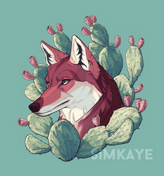 Coyote Portrait by Simkaye