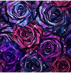 Purple And Magenta Roses.