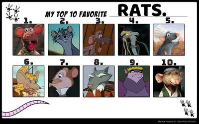 catdragon4's Top 10 Favorite Rats.