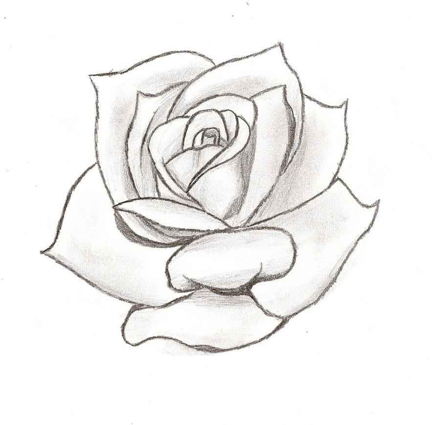 Simple rose stencil pictures tattoo tattooskid for Easy rose tattoos