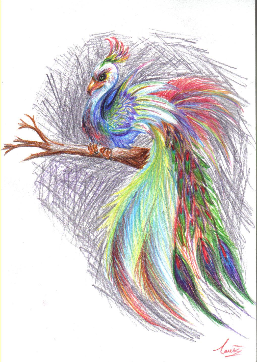 Phoenix Peacock Tattoo
