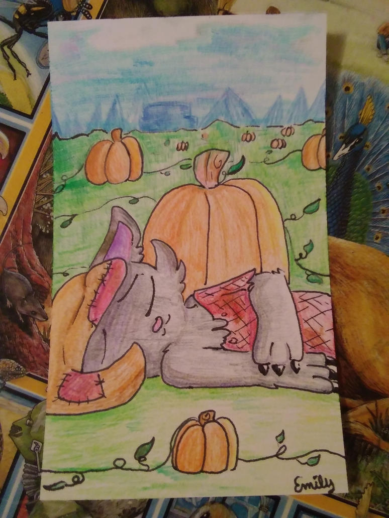 scarecrow the cat on an index card by SilverCandyDeath