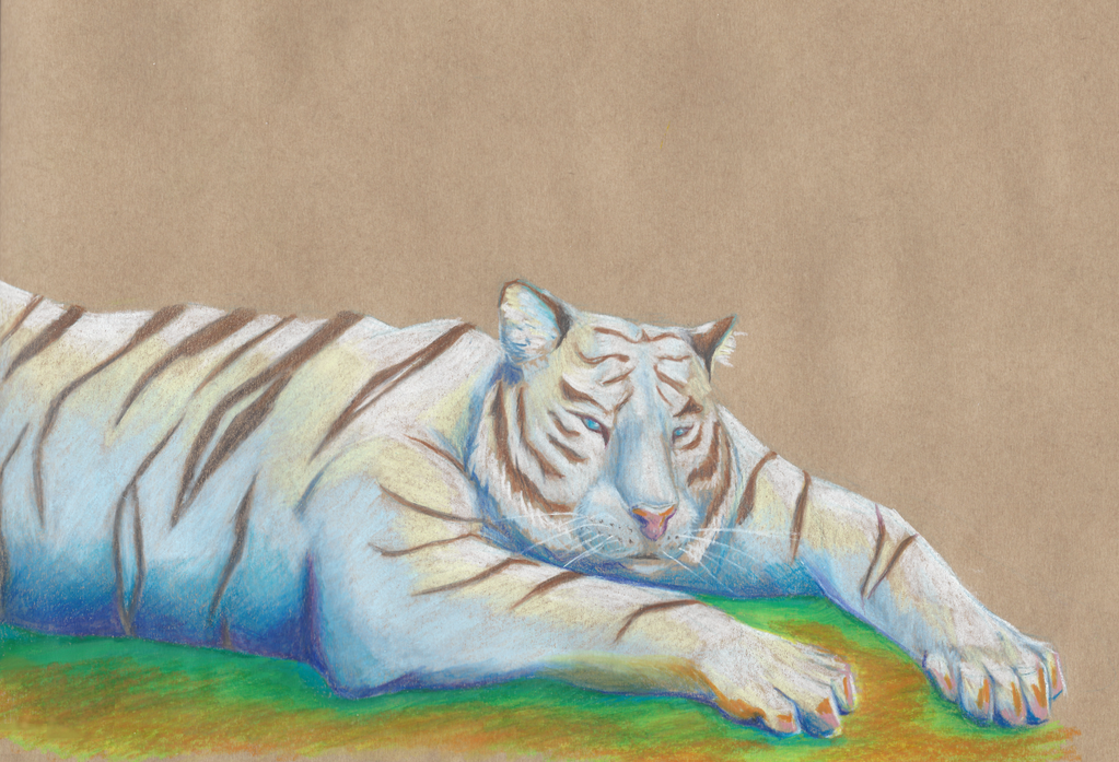 White tiger gift by GreyMind666