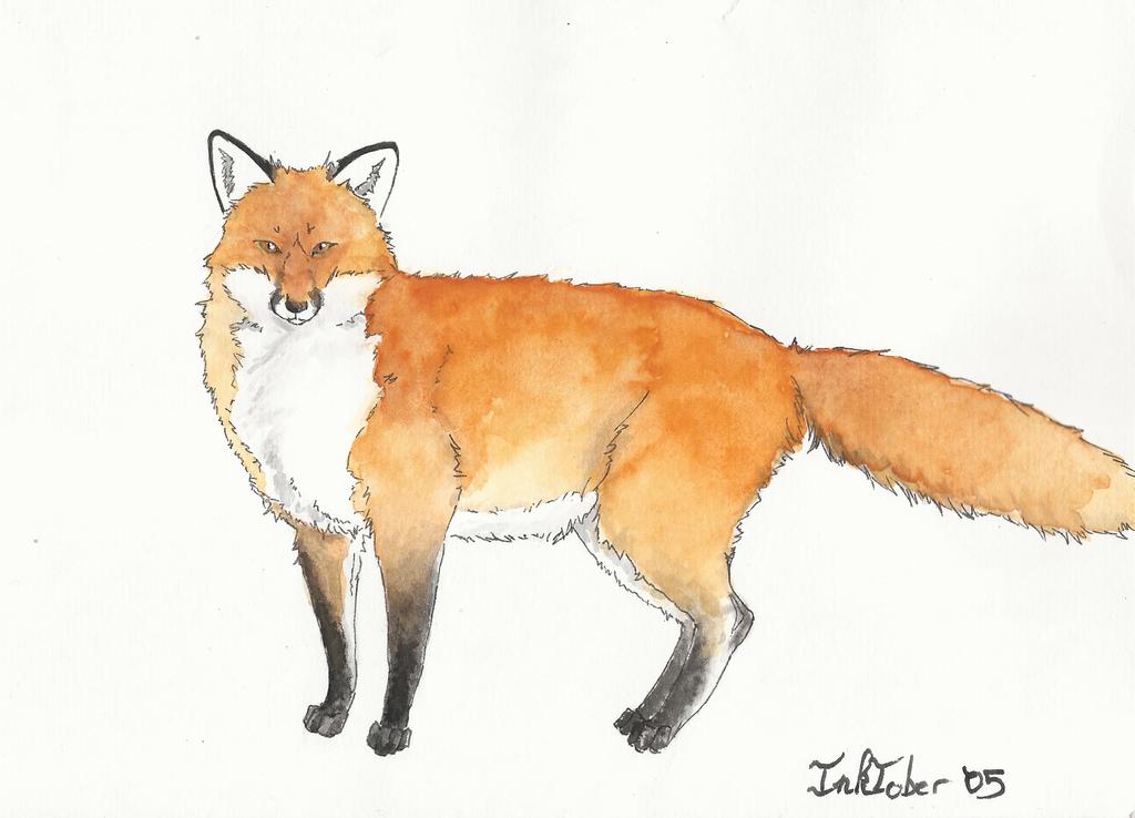 Inktober 05 - Fox by GreyMind666