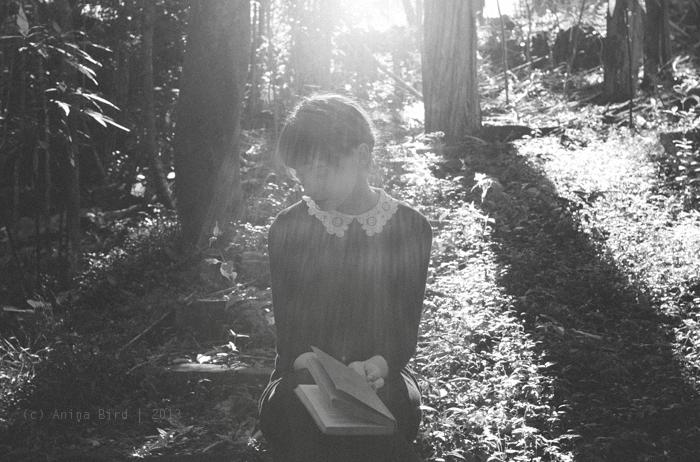 The wonderer by Anina-Bird