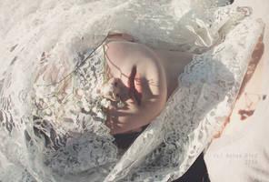 Anthology of Light by Anina-Bird