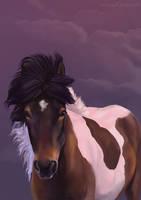 Pony of the north by serranef