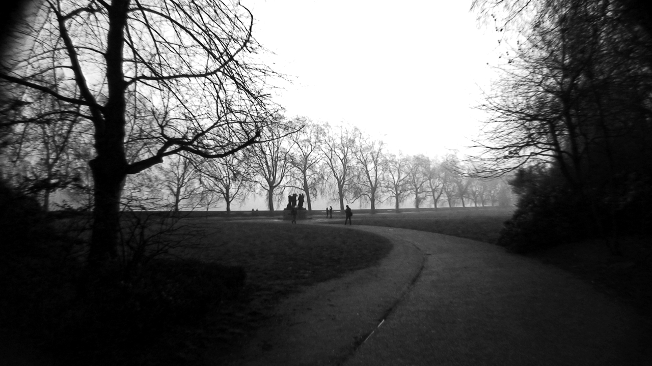 http://fc00.deviantart.com/fs40/f/2009/018/8/5/Dark_Trees_in_a_Park_by_TanorY.jpg