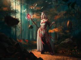 Wizard by Lensar