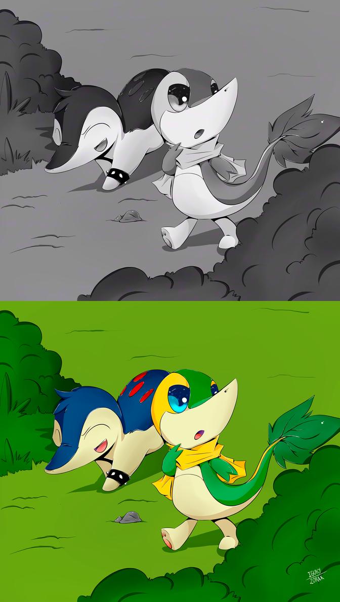 Image Result For Zorak The Pokemon